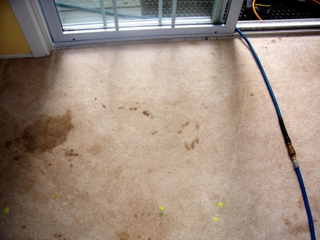 filthy patio door entrance carpet with pet and paint stains before cleaning pic