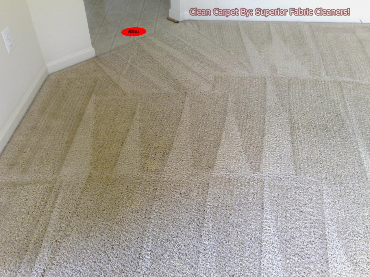 Superior Fabric Cleaners Carpet Cleaning Before Amp After