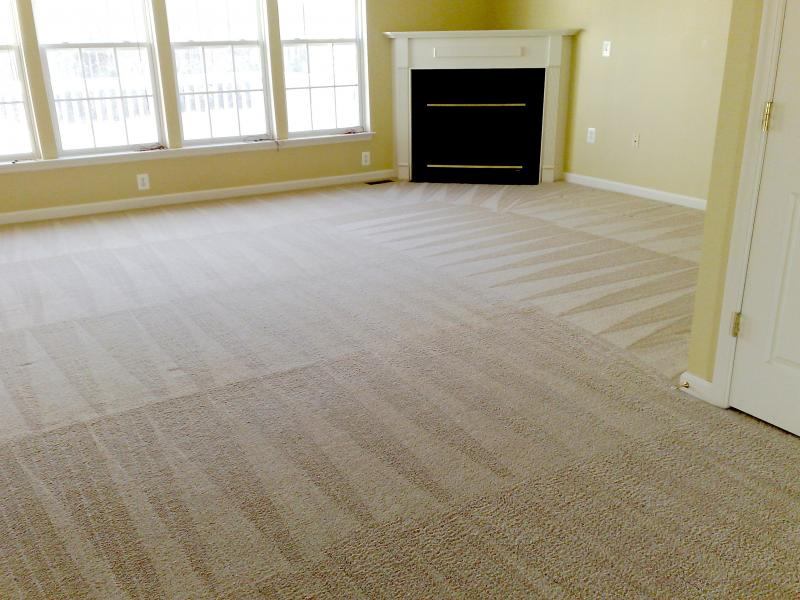 clean family carpet that sparkles afte Vortes Big Truck deep steam dry cleaning
