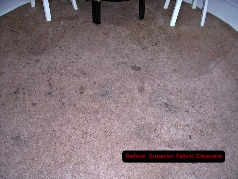 Brown wall to wall filthy before professional carpet cleaning picture